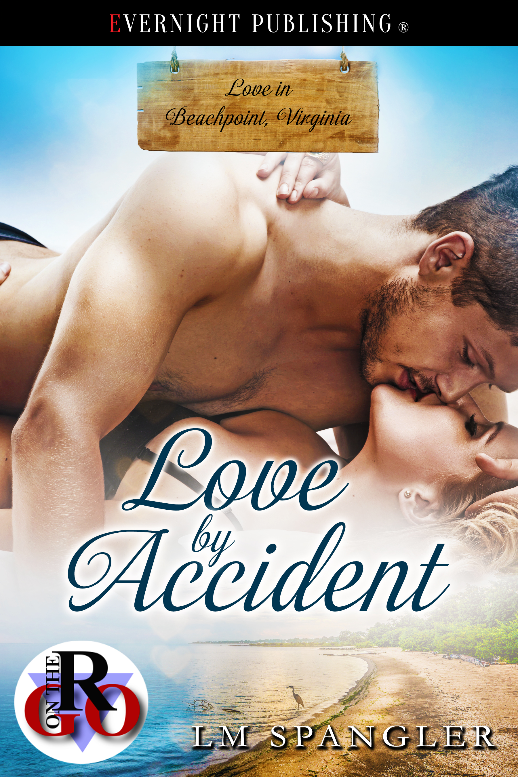 Love by Accident1